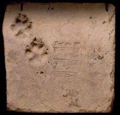 Fired clay brick from the ziggurat at Ur; Ur-Nammu no. 1; cuneiform inscription stamped on face with two accidentally impressed dog's paw-marks near one edge.. From the 3rd Dynasty of Ur (circa. 2112-2004 B.C.E.), now in the British Museum.