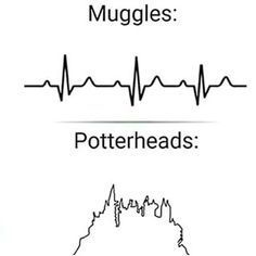 And only potterheads care enough to make an accurate EKG tracing. Harry Potter Tumblr, Harry Potter World, Magia Harry Potter, Estilo Harry Potter, Cute Harry Potter, Harry Potter Feels, Mundo Harry Potter, Harry Potter Drawings, Harry Potter Pictures