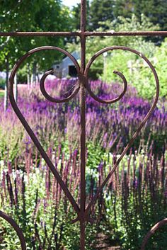 What a pretty gate, the lavender field is beautiful. Are we staying here?....
