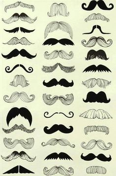 Moustaches tres a la mode :)