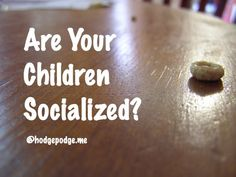 The Answer to Are Your Children Socialized?