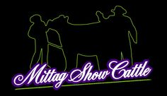 Mittag Show Cattle, Iowa