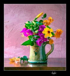 Bougainvilleas in a green jar.  If you like this scene, you can purchase Fine Art Reproductions of the best JC Ferro's photos: http://fineartamerica.com/featured/bougainvilleas-in-a-green-jar-valencia-spain-juan-carlos-ferro-duque.html