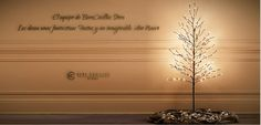 Todo El Equipo de Bere Casillas Store, Te desamos desde el Corazón, una Feliz Navidad.