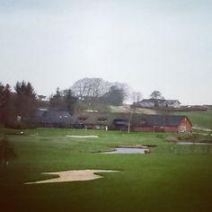 Hedensted hul 18, par 4. Vinter golf i Danmark er ikke dumt