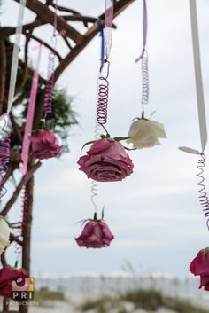 A colorful and delicate detail you can add to your wedding. You can hang them on the ceiling or just at the arch.