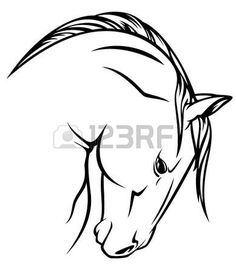 horse profile vector outline - black over white photo