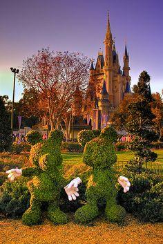 Mickey and Minnie in the Magic Kingdom