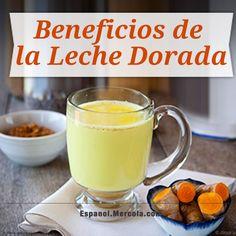 Leche Dorada = Cúrcuma Amarilla + Leche de Coco + Aceite de Coco