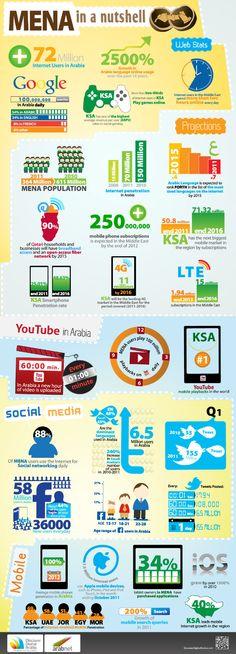 MENA Internet Statistics in a Nutshell