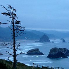 Ecola State Park near Cannon Beach OR. - Great photos from around the West - Sunset Mobile