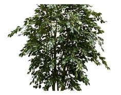 plantART - Large Artificial Trees, Artificial Outdoor Palms, Giant Artificial Bamboo