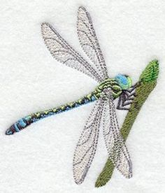 Machine Embroidery Designs at Embroidery Library! - Color Change - C3156