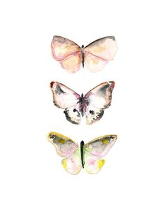 Watercolor Butterflies.  Nature Wall Art. for the bathroom