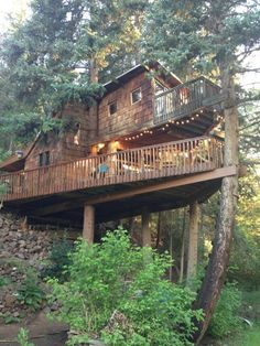 Rocky Mountain Treehouse - Treehouses for Rent in Carbondale, Colorado, United States Building A Treehouse, Magic Treehouse, Treehouse Living, Cool Tree Houses, Tree House Designs, Spruce Tree, In The Tree, Architecture Details, Interior Architecture