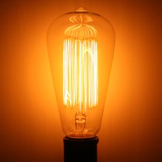 ADL 44291 L2780 PERMALITE 30W MARCONI EDISON FILAMENT Edison Style Antique Light Bulb at eLightBulbs.com