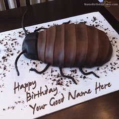 write name on Cockroach Birthday Cake picture