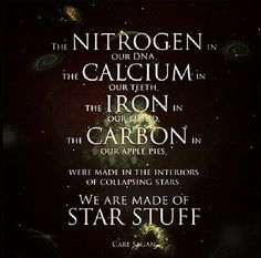 Neil Degrasse Tyson // Carl Sagan