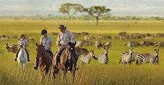 African Safari | Natural Migrations AFRICAN SAFARI Horse Safaris Tanzania