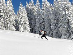 L'hiver, c'est Jean-Paul Ferbayre, chef de secteur du Parc national de la Vanoise, qui se charge de dégager les accès et d'assurer l'entretien de ceux de Turia et de La Martin, en Haute Tarentaise. Photo PNV-Christian BALAIS