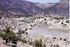 Trilobites of Wheeler Shale, UT  http://www.trilobites.info/Utah.htm#