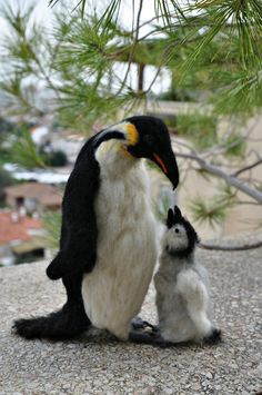 Needle Felted Penguins. Father with a baby. Ready by darialvovsky