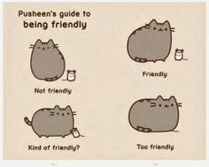 I Am Pusheen the Cat by Claire Belton - Who is Pusheen? This collection of oh-so-cute kitty comics—featuring the chubby, tubby tabby who has taken the Internet. Pusheen The Cat Book, Chat Pusheen, Pusheen Love, Pusheen Stuff, Crazy Cat Lady, Crazy Cats, Meme Chat, Pusheen Stormy, Kawaii Cat