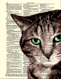 Dictionary Art Print, Cat Print, Sly Cat Art, Home Decor, Dictionary Print. $10.00, via Etsy.