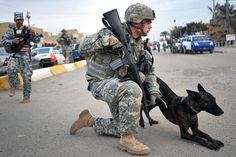 """FORWARD OPERATING BASE FALCON, Iraq; Staff Sgt. Christopher Ogle, a native of Beaver Creek, Ohio, and military police dog handler, leads his assigned dog, """"Liaka,"""" a Dutch Shepherd, along streets in the Hadar community during a mission with Company C, 2nd Battalion, 4th Infantry Regiment, attached to the 1st Brigade Combat Team, 4th Infantry Division, Multi-National Division &;= Baghdad, and Iraqi National Police on a combined security patrol Nov. 29, in southern Baghdad's Ras…"""