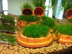 DIY Mesh Aquarium Planters