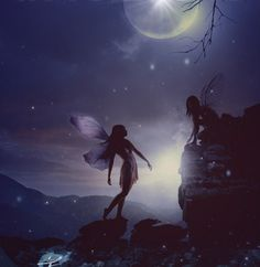 uncorny fairy: double fairy moonlit rock