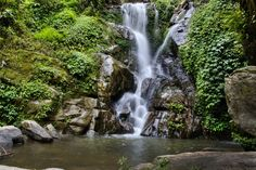 Waterfall and Forest Pool - Wall Mural & Photo Wallpaper - Photowall