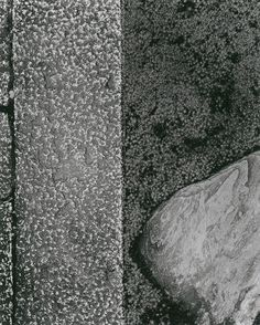 """Ishimoto Yasuhiro: """"Katsura: Steinweg"""", 1953/54   © Ishimoto Yasuhiro/Bauhaus‐Archiv - Museum für Gestaltung"""