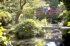 Two Oregon visitors inspect Seattle's Kubota Garden, a 20-acre landscape that blends Japanese garden concepts with native Northwest plants.  The garden is a public park with no admission fee. (Ellen M. Banner / The Seattle Times)