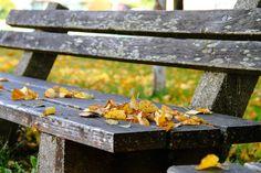 Park, Autumn, Bank, Leaves, Nature #park, #autumn, #bank, #leaves, #nature