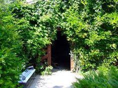 Image result for ogrody lesne galeria