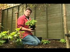 Alan Titchmarshs How To Be A Gardener S02E02 Blank Canvas Garden