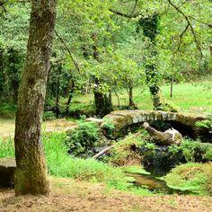 Un precioso lugar cerca de mi casa a Ponte de Paradela en Teo. De esos rincones que casi nadie conoce y que valen mucho la pena.