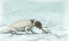 Durante el principio del pérmico el clima en muchas regiones del globo era frío o muy frío, y se habla de una edad glacial. Esta especulación de Daniel Newman muestra a un pelicosaurio adoptado a estas condiciones.