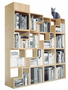 A cat library. Built-in kitty staircase & pent-house bed. Bookshelves for books and cats! -- Corentin Dombrecht