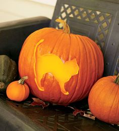 Pumpkin Carving: Fun Pumpkins All Aglow - Real Time - Diet, Exercise, Fitness, Finance You for Healthy articles ideas Cat Pumpkin Carving, Spooky Pumpkin, Pumpkin Art, Pumpkin Ideas, Halloween Cat, Vintage Halloween, Halloween Pumpkins, Halloween Decorations, Carving Designs
