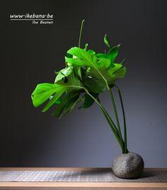 Ikebana arrangement by Ilse Beunen using only the color green. #ikebana #sogetsu