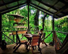 Ubicada en la selva tropical de Costa Rica, la Finca Bellavista es una comunidad pionera de casas árbol autosostenibles.