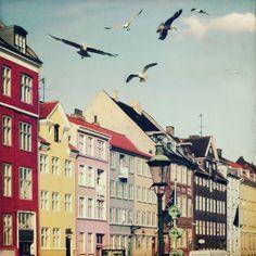 Copenhagen by Julia Davila