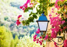 Straße Laterne Mit Blumen Im Dorf Deia, Mallorca, Balearen, Spanien Lizenzfreie…