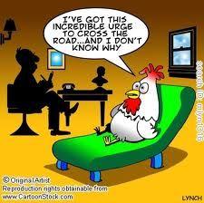 Chicken Jokes funny cartoons from CartoonStock directory - the world's largest on-line collection of cartoons and comics. Funny Cartoons, Funny Jokes, Hilarious, Farm Jokes, Memes Humor, Chicken Jokes, Funny Chicken, Chicken Chick, Chicken Art