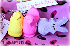 Peeps Pops & Free Easter Printables from Ya Gotta Have a Hobby