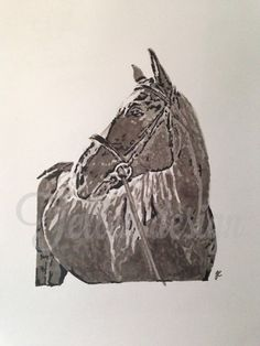 Horse ,promarkers #tellendesign