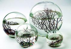 ゝ。EcoSphere .:By Kibardindesign:.