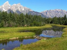Best ways to get a campsite at the top ten national parks - Grand Teton National Park, Wyoming Camping Places, Camping And Hiking, Camping Life, Outdoor Camping, Places To Travel, Places To Go, Camping Outdoors, Backpacking, Travel Destinations